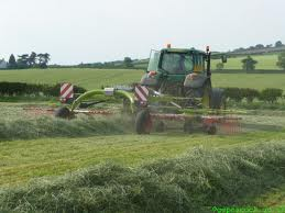 Haylage Mix (4 Acre Pack 60kg)