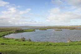 Wetland - PRO 28 (20kg)