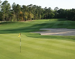 Golf Greens High Performance - PRO 13 (20kg)