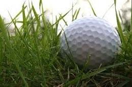 Low Maintenance Golf Rough - PRO 25 (20kg)