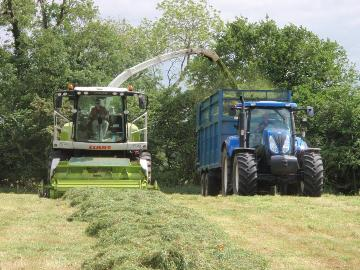 Medium Term Silage Mix - Broadsward (20kg) grass seed