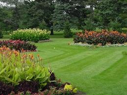 Fine Lawns - PRO 52 (20kg)