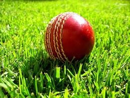 Cricket, Tennis & Tees Renovation - PRO 36 (20kg)