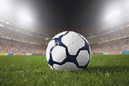Premier Sports Field, New Build & Renovation - PRO 81 (20kg)