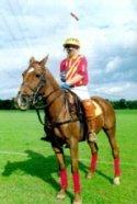 Racecourses & Polo Grounds - PRO MASTER 65 - (20KG)